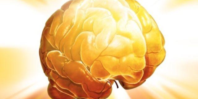 ¿Cómo funciona el cerebro cuando aprende?